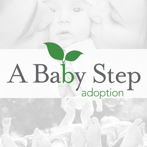 I Want To Adopt   A Baby Step Adoption